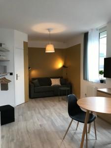 Présentation d'un salon d'un des logements neufs